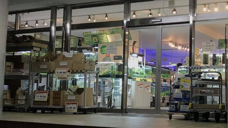 ペンギンビレッジ大泉店の外観の拡大写真